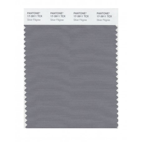 Pantone 17-3911 TCX Swatch Card Silver Filigree