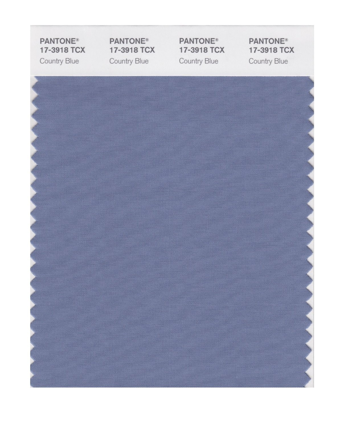 Pantone 17-3918 TCX Swatch Card Country Blue