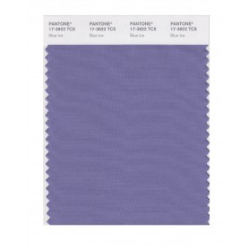 Pantone 17-3922 TCX Swatch Card Blue Ice