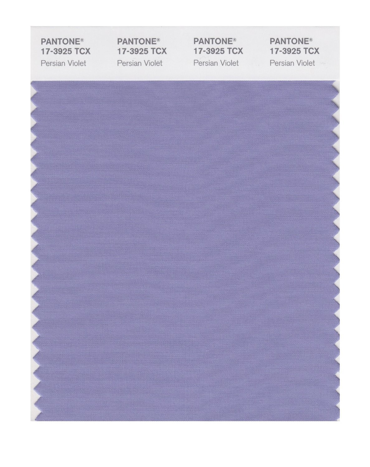 Pantone 17-3925 TCX Swatch Card Persian Violet