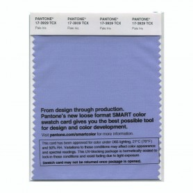 Pantone 17-3929 TCX Swatch Card Pale Iris