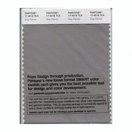 Pantone 17-4016 TCX Swatch Card Gray Flannel