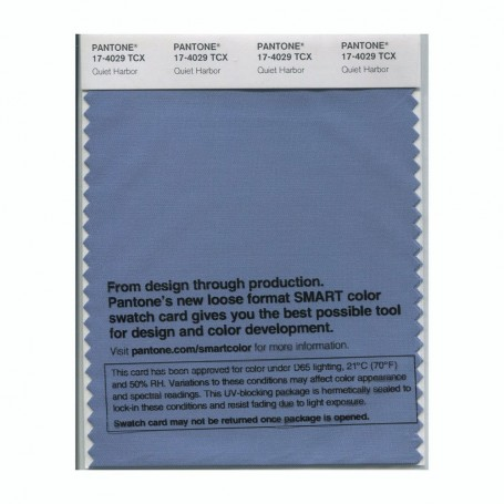 Pantone 17-4029 TCX Swatch Card Quiet Harbor