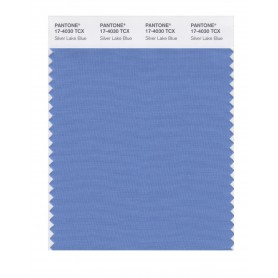 Pantone 17-4030 TCX Swatch Card Silver Lake Blue