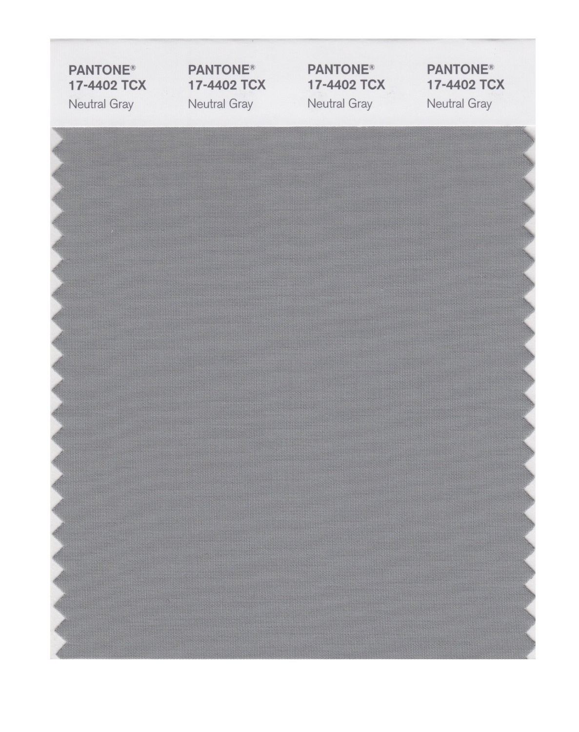 Pantone 17-4402 TCX Swatch Card Neutral Gray