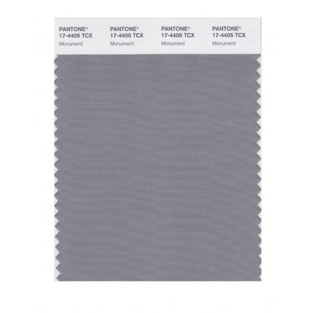 Pantone 17-4405 TCX Swatch Card Monument