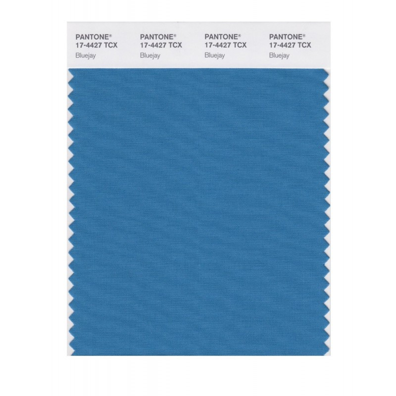 Pantone 17-4427 TCX Swatch Card Bluejay