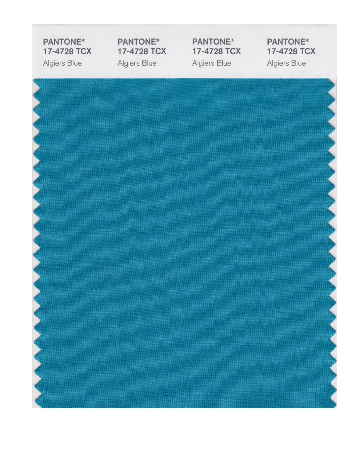 Pantone 17-4728 TCX Swatch Card Algiers Blue
