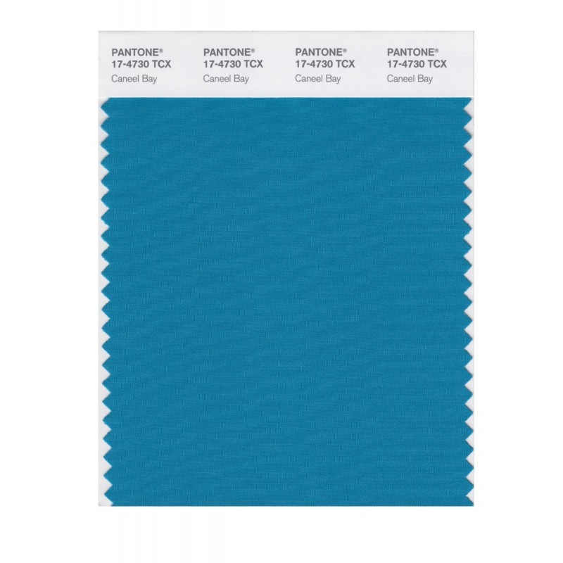 Pantone 17-4730 TCX Swatch Card Caneel Bay