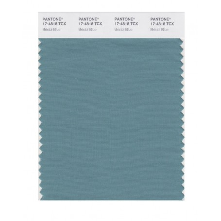 Pantone 17-4818 TCX Swatch Card Bristol Blue