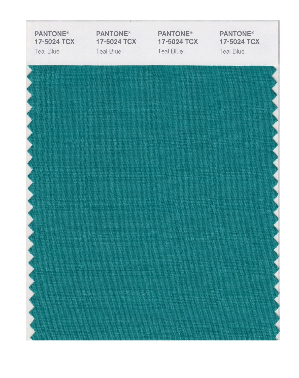 Pantone 17-5024 TCX Swatch Card Teal Blue