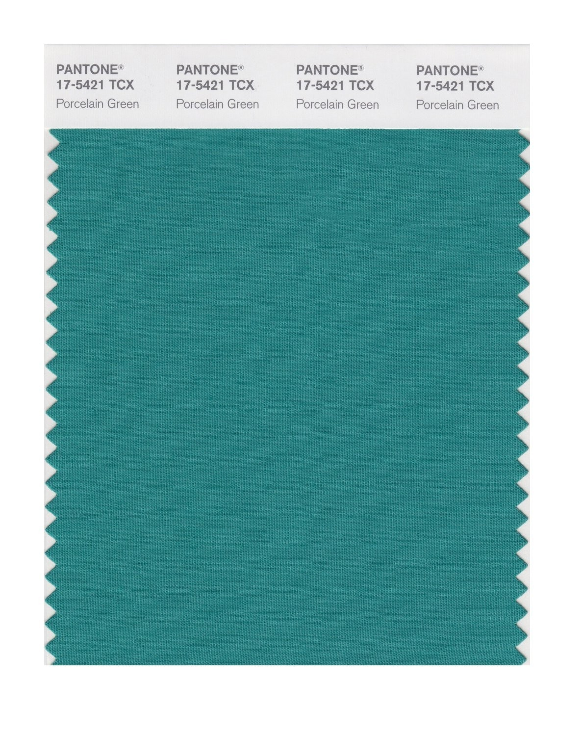 Pantone 17-5421 TCX Swatch Card Porcelain Green