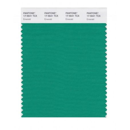 Pantone 17-5641 TCX Swatch Card Emerald