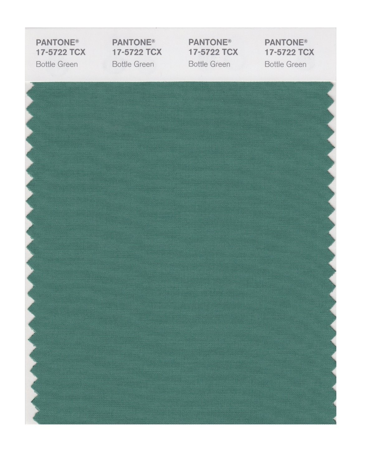 Pantone 17-5722 TCX Swatch Card Bottle Green