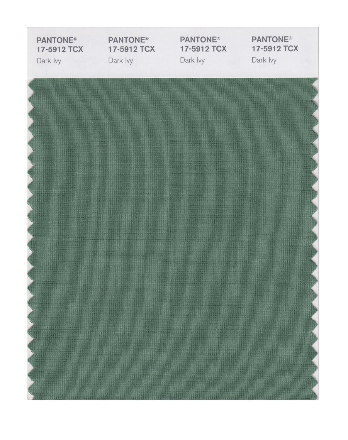 Pantone 17-5912 TCX Swatch Card Dark Ivy