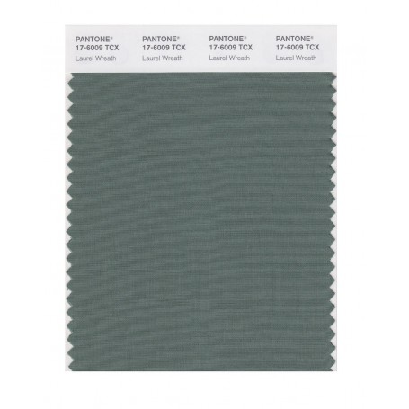 Pantone 17-6009 TCX Swatch Card Laurel Wreath