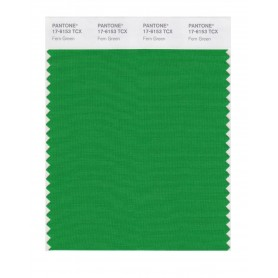 Pantone 17-6153 TCX Swatch Card Fern Green