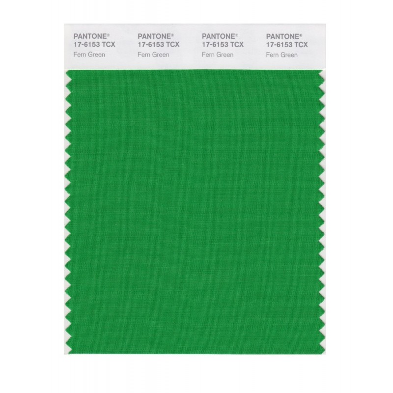 Pantone 17-6153 TCX Swatch Card Fern Green Buy in india