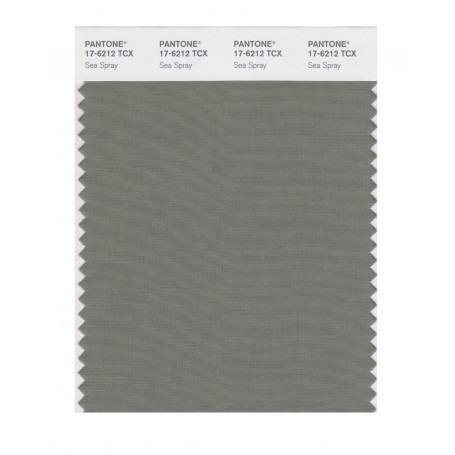Pantone 17-6212 TCX Swatch Card Sea Spray