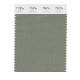 Pantone 17-6323 TCX Swatch Card Hedge Green