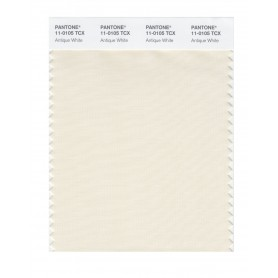 Pantone 11-0105 TCX Swatch Card Antique White