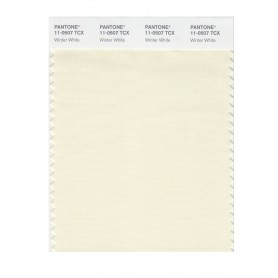 Pantone 11-0507 TCX Swatch Card Winter White