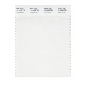 Pantone 11-0602 TCX Swatch Card Snow White