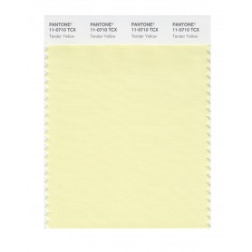 Pantone 11-0710 TCX Swatch Card Tender Yellow