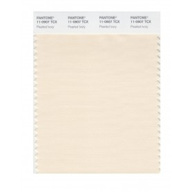 Pantone 11-0907 TCX Swatch Card Pearled Ivory