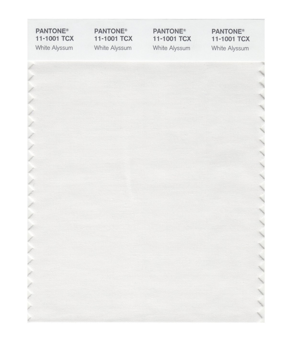 Pantone 11-1001 TCX Swatch Card White Alyssum