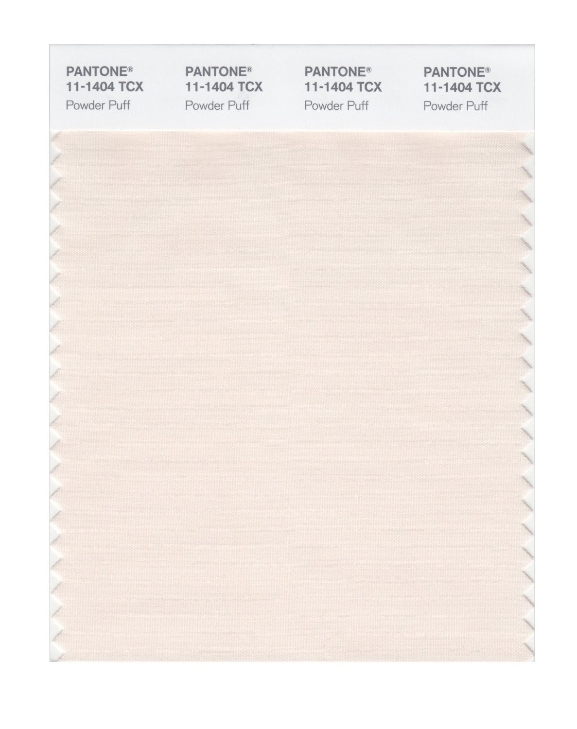 Pantone 11-1404 TCX Swatch Card Powder Puff