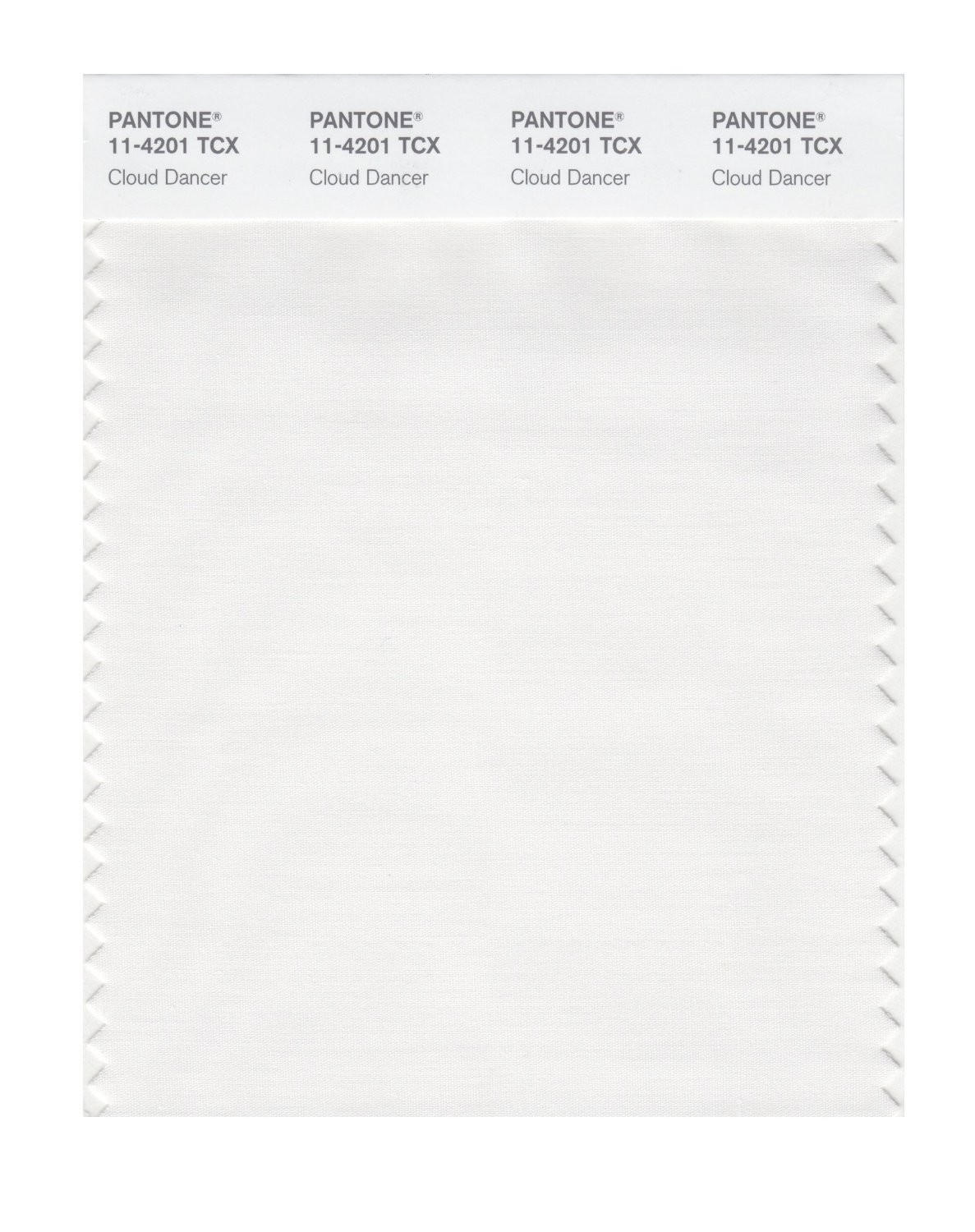 Pantone 11-4201 TCX Swatch Card Cloud Dancer
