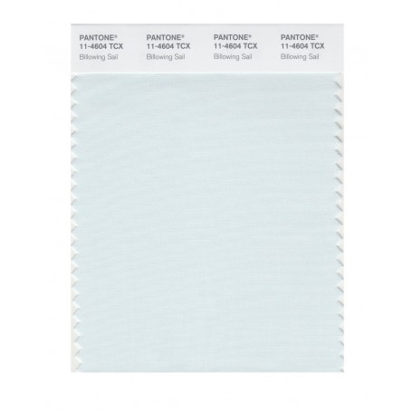 Pantone 11-4604 TCX Swatch Card Billowing Sail
