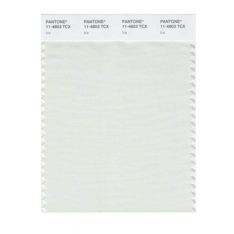 Pantone 11-4803 TCX Swatch Card Ice