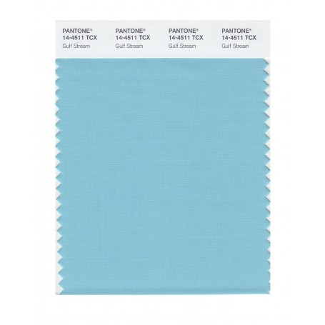 Pantone 14-4511 TCX Swatch Card Gulf Stream