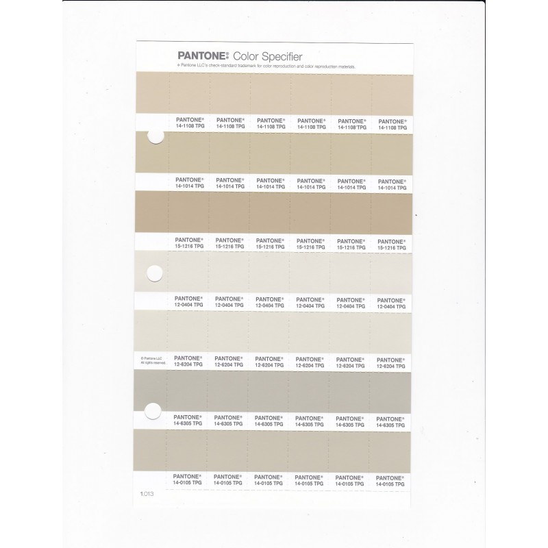 PANTONE 11 4802 TPG Summer Shower Replacement Page Fashion Home Interiors