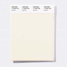Pantone 11-0102 TSX Marshmallow Polyester Swatch Card