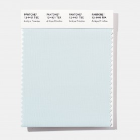 Pantone 11-0720 TSX Duckling Polyester Swatch Card