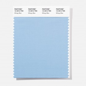 Pantone 13-3512 TSX Taffy Batter Polyester Swatch Card
