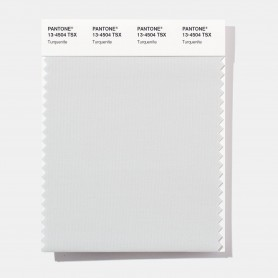 Pantone 13-4504 TSX Turquenite Polyester Swatch Card