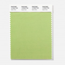 Pantone 13-4421 TSX Castaway Polyester Swatch Card