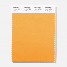 Pantone 14-0938 TSX Ancient Grai Polyester Swatch Card