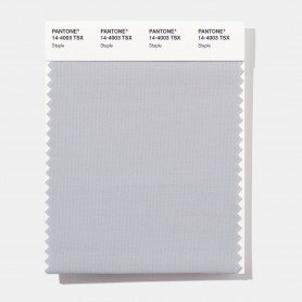 Pantone 14-4003 TSX Staple Polyester Swatch Card