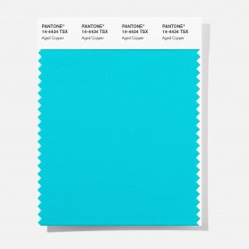 Pantone 14-2810 TSX Charm Pink Polyester Swatch Card