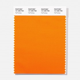 Pantone 15-1260 TSX Fall Fantasy Polyester Swatch Card