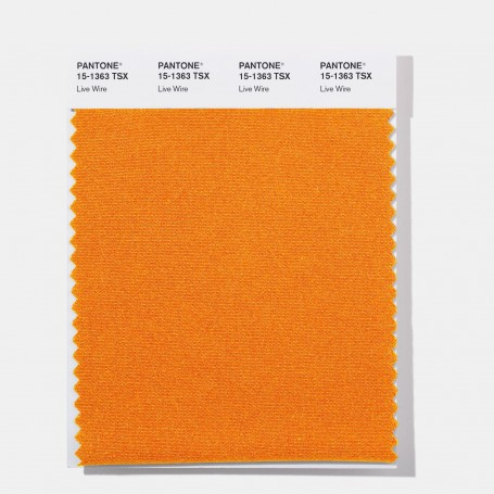 Pantone 14-4434 TSX Aged Copper Polyester Swatch Card