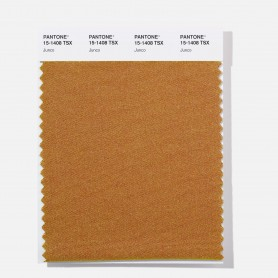 Pantone 15-1351 TSX Candied Yams Polyester Swatch Card