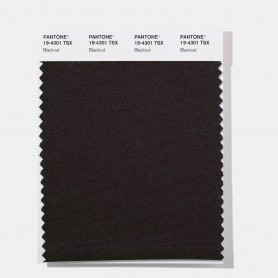Pantone 19-3931 TSX Ink Blot Polyester Swatch Card