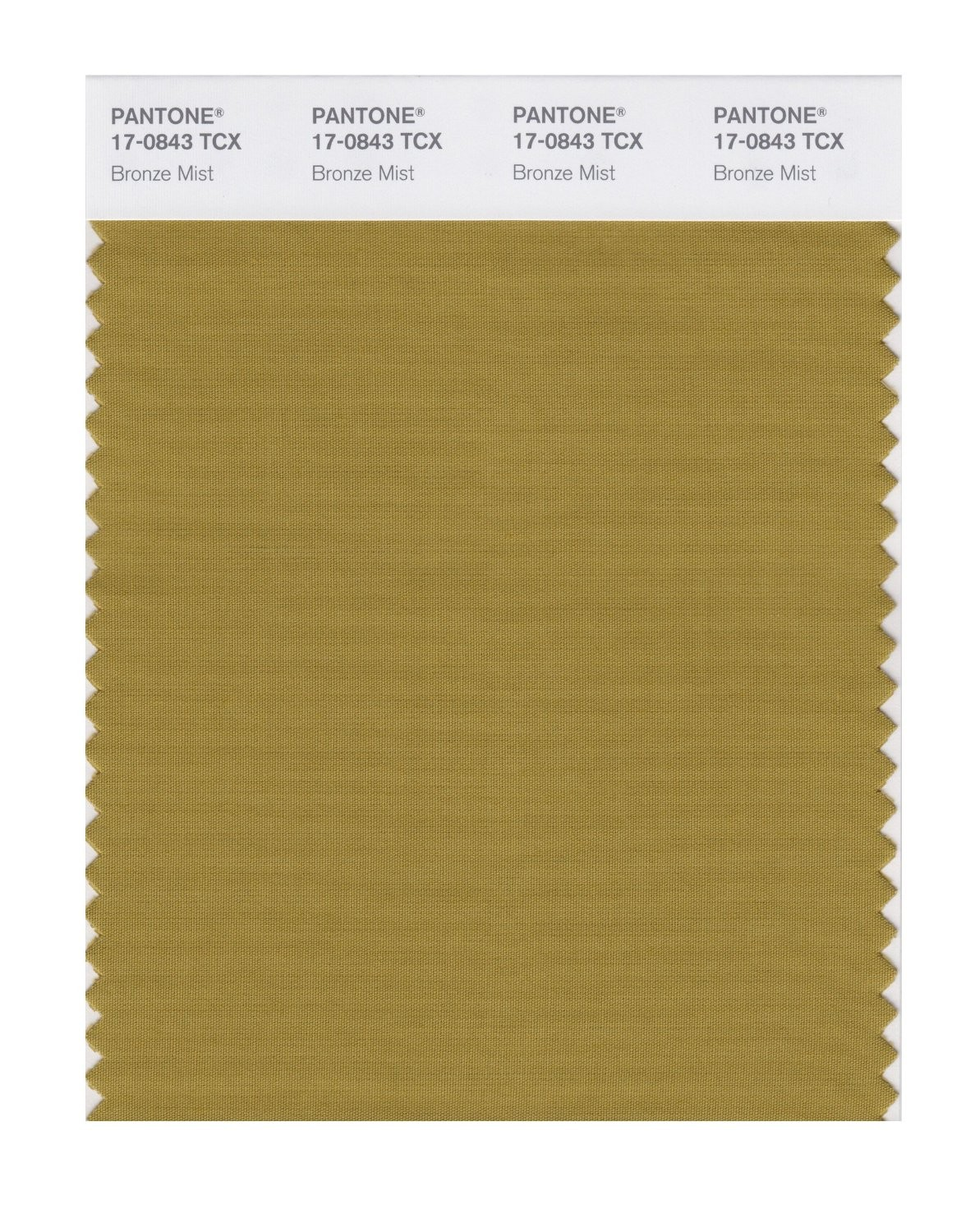 Pantone 17-0843 TCX Swatch Card Bronze Mist