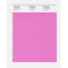 Pantone 16-1650 TN Diva Pink Nylon Brights Swatch Card